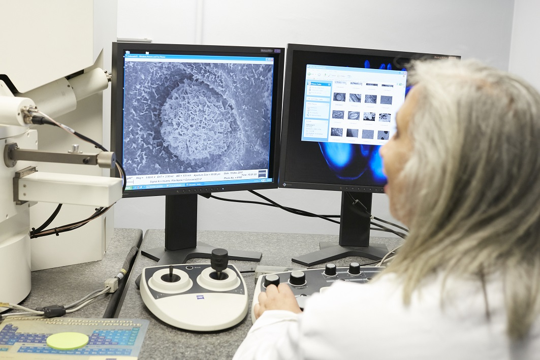 Researcher viewing detailed microscope images on a computer screen.